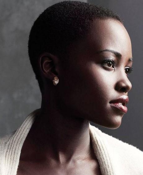 Cheveux Des Noirs Africains